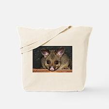 Cute Australian Possum with big eyes Tote Bag