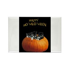 Cute Halloween puppies Rectangle Magnet