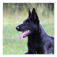 "Cute German shepherd black Square Car Magnet 3"" x 3"""