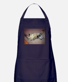 Very happy formerly stray Maine Coon Apron (dark)