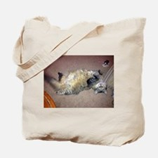 Very Happy Formerly Stray Maine Coon Tote Bag