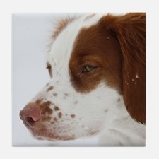 Brittany Face of Love-1.jpg Tile Coaster