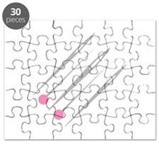 Pins and Needles Puzzle