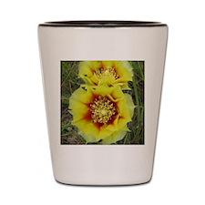 Cactus blooms Shot Glass