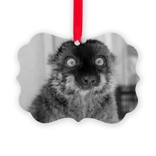 'malbec', Brown Lemur Holiday Ornament