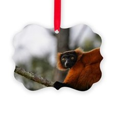 Red Ruffed Lemur Holiday Ornament
