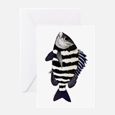 Sheepshead porgy Greeting Cards