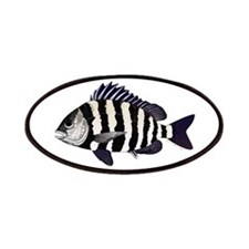 Sheepshead porgy Patches