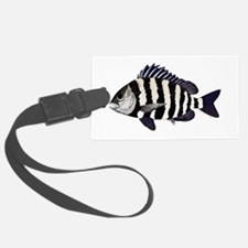Sheepshead porgy Luggage Tag