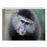 Monkeys Wall Calendars