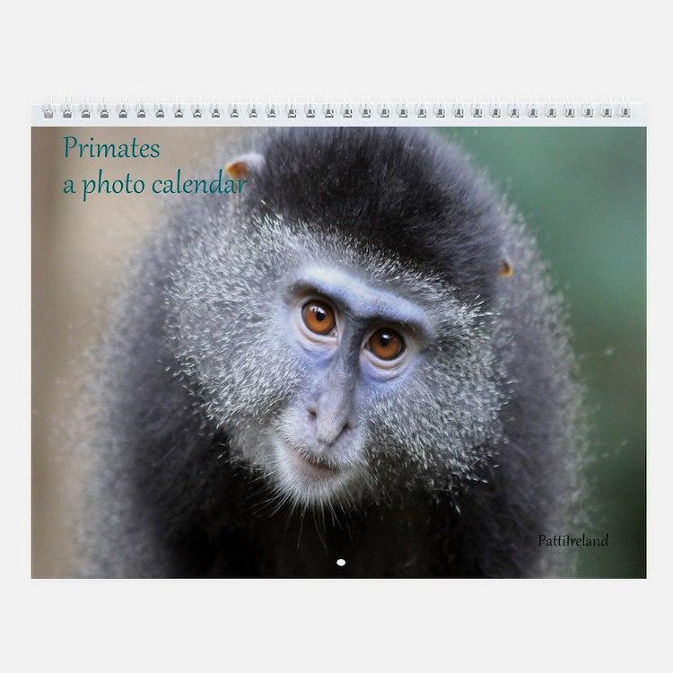 Primates Photo Wall Calendar