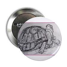 "Turtle, tortoise, nature art 2.25"" Button (100 pac"
