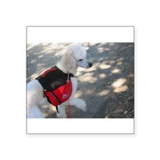 Standard Poodle Backpacking Sticker