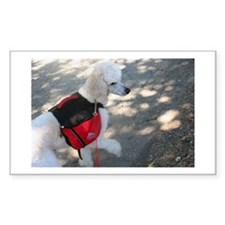 Standard Poodle Backpacking Decal