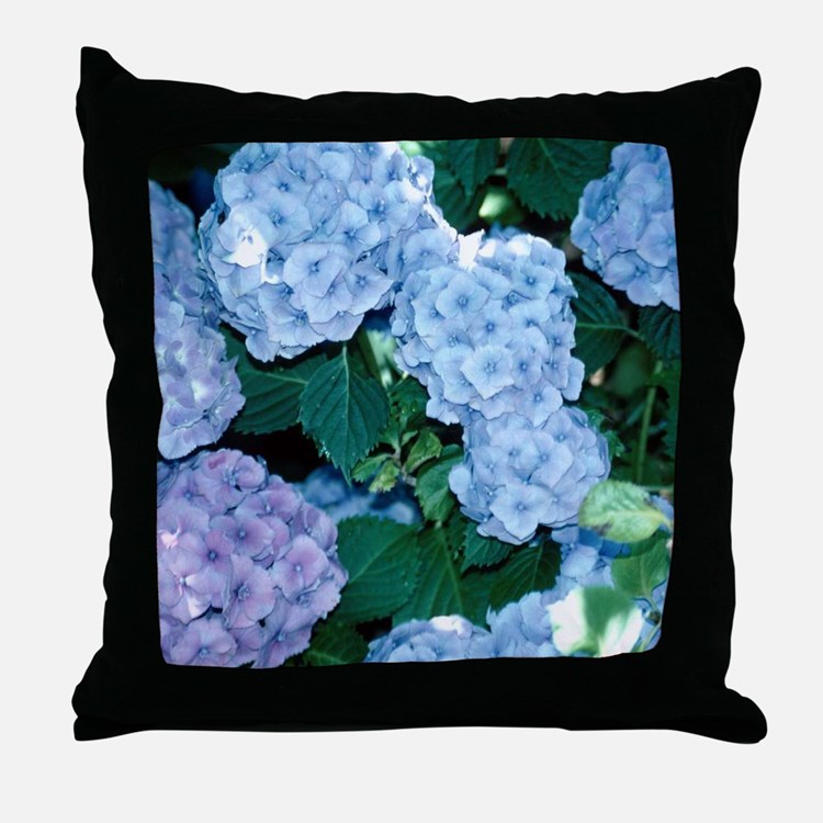 Blue Hydrangea Throw Pillow : Blue Hydrangeas Pillows, Blue Hydrangeas Throw Pillows & Decorative Couch Pillows