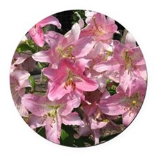 Beautiful Pink Lilies Round Car Magnet