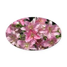 Beautiful Pink Lilies Oval Car Magnet