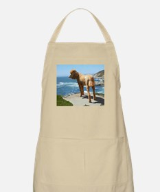 Funny Red standard poodle Apron