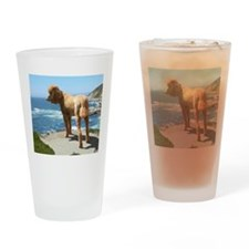 Unique Red poodle Drinking Glass