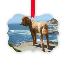 Funny Red poodle Ornament