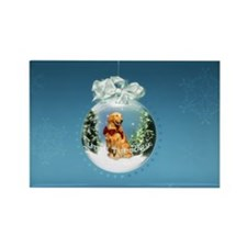 Until Tuesday - Snowglobe Magnets