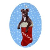 Rescue pit bull Ornaments