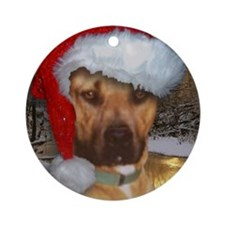 Pit bull. Ornament (Round)
