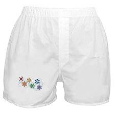 Rainbow Snow Flakes Boxer Shorts