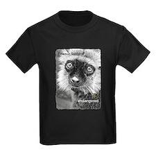 LCF's lemurs T