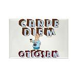 Carpe Diem Otiosam m Rectangle Magnet (10 pack)