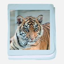 Tiger011 baby blanket