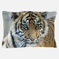 Tiger011 Pillow Case