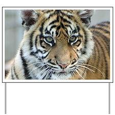 Tiger011 Yard Sign
