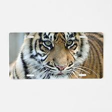 Tiger011 Aluminum License Plate
