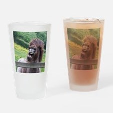 Tired of Waiting Drinking Glass