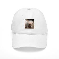 Piglet 001 Baseball Cap