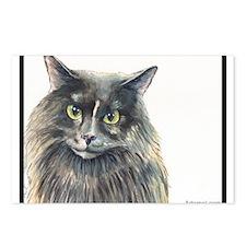 Cat-Cat the Masked Marauding Norwegian Postcards (