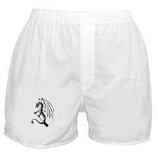 Dragon with paddle logo Boxer Shorts