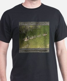 Old window canadian geese T-Shirt