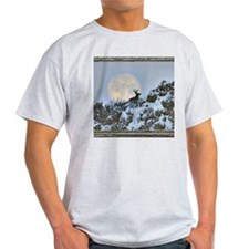 Old window snow buck 2 T-Shirt