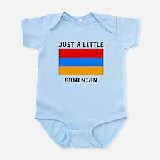 Just A Little Armenian Body Suit