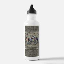 Old window horses 3 Water Bottle