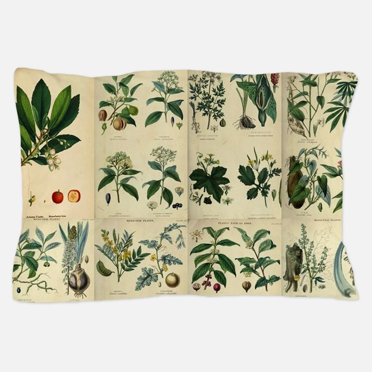 Illustrated Flora Pillow Case