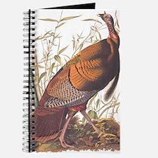 Audubon Wild Turkey Journal