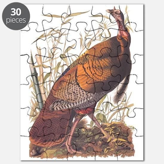 Audubon Wild Turkey Puzzle