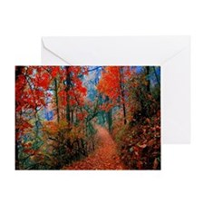 Autumn Flames Trail Greeting Cards