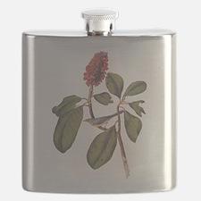 Audubon Bonaparte Fly Catcher Flask