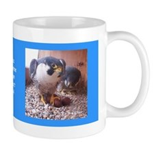 2014 Falcon Family Mugs