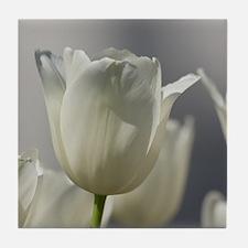 White Tulips Tile Coaster