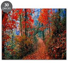 Autumn Flames Trail Puzzle